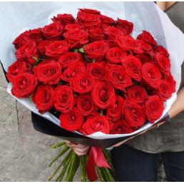25 красных роз 70 см Эквадор
