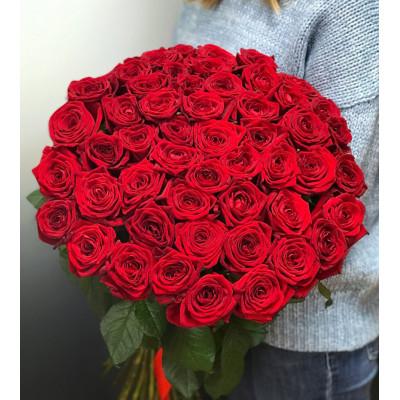51 красных роз 70 см Эквадор