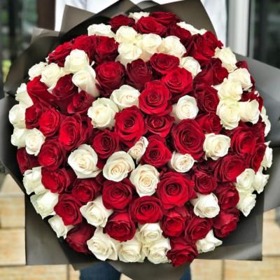101 красная и белая роза 40 см Кения