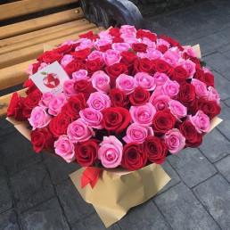 101 красная и розовая роза 40 см Кения