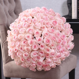 101 нежно-розовые розы 40 см Кения