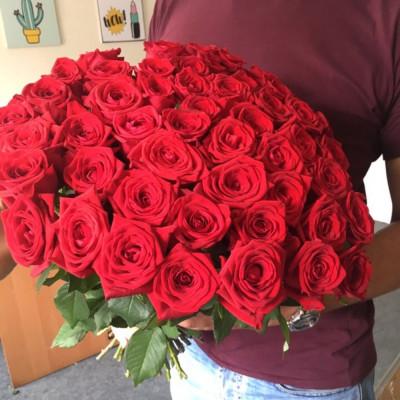 51 красная роза 50 см Эквадор