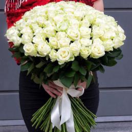 51 белая роза 70 см Эквадор
