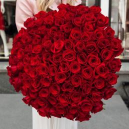 101 красная роза 50 см Кения