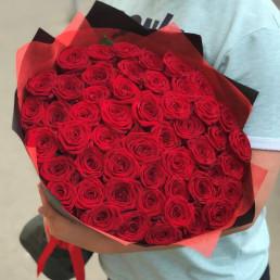 51 красная роза 70 см Эквадор