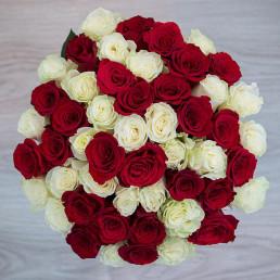 51 красная и белая роза 40 см Кения