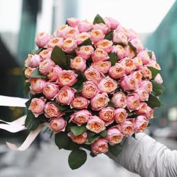 51 кремовая пионовидная роза 50 см