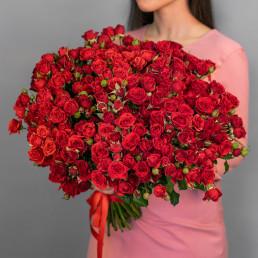 51 красные кустовые розы 50 см