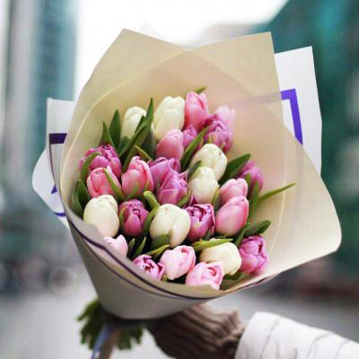 25 тюльпанов бело-розовые
