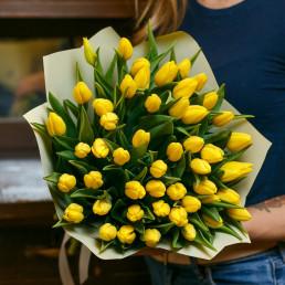 51 жёлтый тюльпан