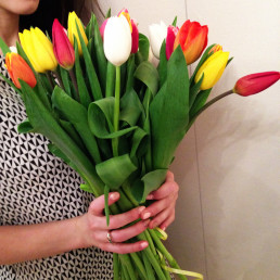 15 тюльпанов микс